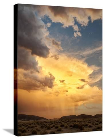 USA, California, Mojave National Preserve, Desert Rain Squall at Sunset-Ann Collins-Stretched Canvas Print