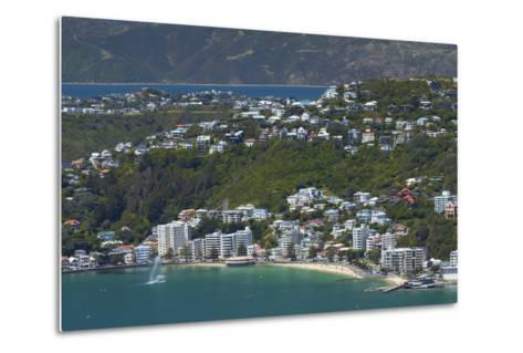 Wellington Harbour and Oriental Bay, Wellington, North Island, New Zealand-David Wall-Metal Print