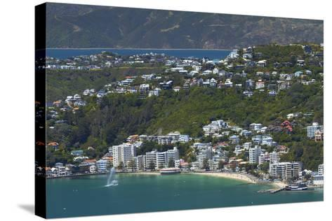 Wellington Harbour and Oriental Bay, Wellington, North Island, New Zealand-David Wall-Stretched Canvas Print