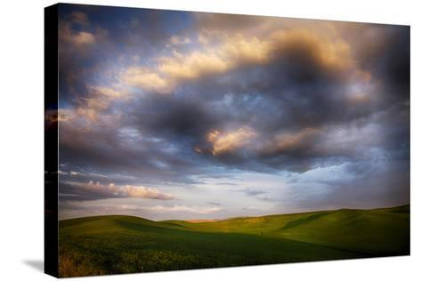 Washington, Palouse County, Rolling Hills of Green Spring Wheat and Evening Bright Clouds-Terry Eggers-Stretched Canvas Print