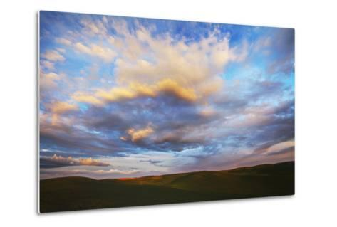 Washington, Palouse County, Rolling Hills of Green Spring Wheat and Evening Bright Clouds-Terry Eggers-Metal Print