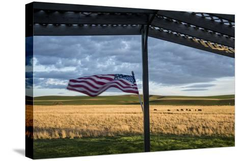 Whitman County, Lacrosse, Pioneer Stock Farm, View from Fran Jones Home of Flag and Pasture-Alison Jones-Stretched Canvas Print