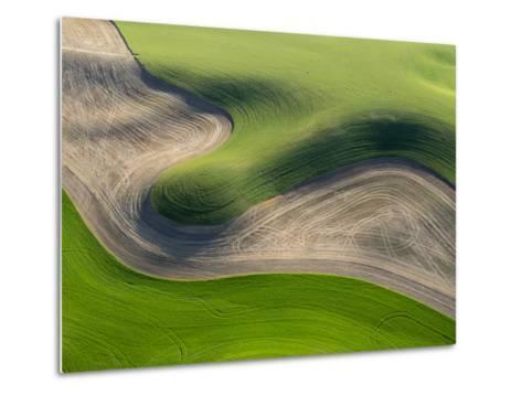 Washington, Palouse, Whitman County. Aerial of Palouse Region-Julie Eggers-Metal Print