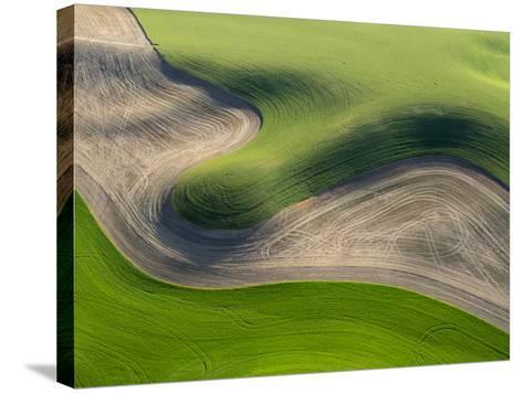 Washington, Palouse, Whitman County. Aerial of Palouse Region-Julie Eggers-Stretched Canvas Print