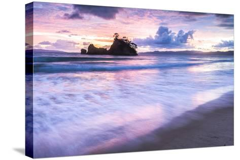 Pungapunga Island at Whangapoua Beach at Sunrise, Coromandel Peninsula, North Island, New Zealand-Matthew Williams-Ellis-Stretched Canvas Print
