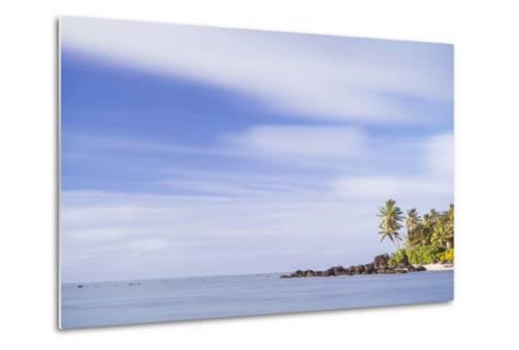 Palm Tree Long Exposure, Muri, Rarotonga, Cook Islands, South Pacific, Pacific-Matthew Williams-Ellis-Metal Print