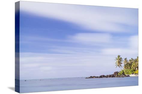 Palm Tree Long Exposure, Muri, Rarotonga, Cook Islands, South Pacific, Pacific-Matthew Williams-Ellis-Stretched Canvas Print