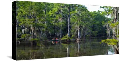 Caddo Lake, Texas, United States of America, North America-Kav Dadfar-Stretched Canvas Print