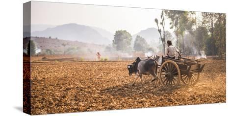 Farming Between Inle Lake and Kalaw, Shan State, Myanmar (Burma), Asia-Matthew Williams-Ellis-Stretched Canvas Print