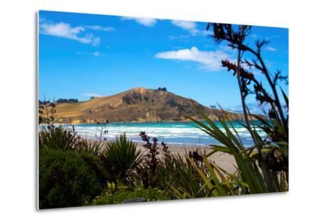 Waikouaiti Reserve, Otago, South Island, New Zealand, Pacific-Suzan Moore-Metal Print