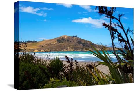 Waikouaiti Reserve, Otago, South Island, New Zealand, Pacific-Suzan Moore-Stretched Canvas Print