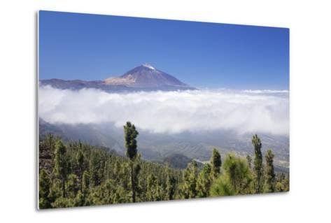 View over Orotava Valley to Pico Del Teide, National Park Teide, Tenerife, Canary Islands, Spain-Markus Lange-Metal Print