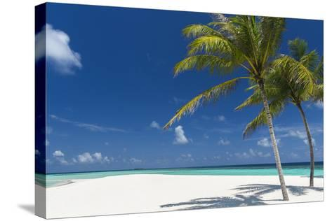 Palm Trees and Tropical Beach, Maldives, Indian Ocean, Asia-Sakis Papadopoulos-Stretched Canvas Print