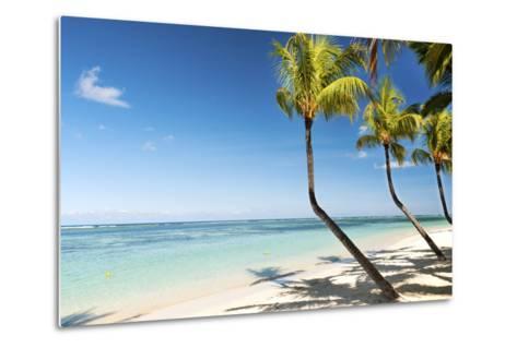 Turquoise Sea and White Palm Fringed Beach at Wolmar, Black River, Mauritius, Indian Ocean, Africa-Jordan Banks-Metal Print