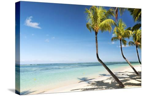 Turquoise Sea and White Palm Fringed Beach at Wolmar, Black River, Mauritius, Indian Ocean, Africa-Jordan Banks-Stretched Canvas Print