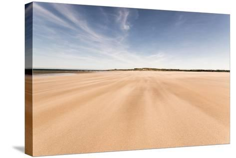Budle Bay, Looking Towards Bamburgh, Northumberland, England, United Kingdom, Europe-Bill Ward-Stretched Canvas Print