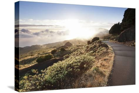 Road at the South Coast at Sunset, Near Orchilla Volcano, El Hierro, Canary Islands, Spain-Markus Lange-Stretched Canvas Print