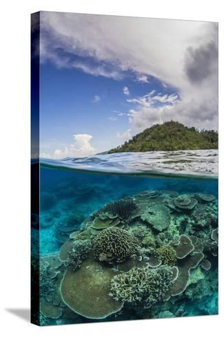 Half Above and Half Below View of Coral Reef at Pulau Setaih Island, Natuna Archipelago, Indonesia-Michael Nolan-Stretched Canvas Print