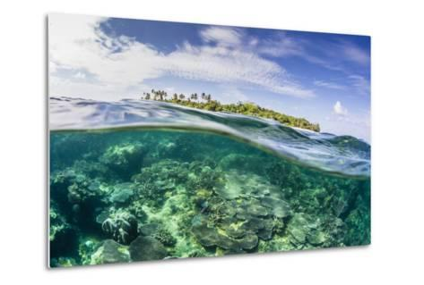 Half Above and Half Below on a Remote Small Islet in the Badas Island Group Off Borneo, Indonesia-Michael Nolan-Metal Print