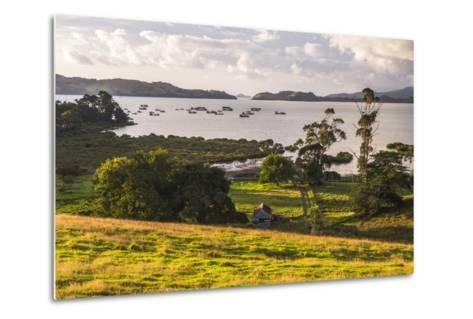 Countryside at Coromandel Town, Coromandel Peninsula, North Island, New Zealand, Pacific-Matthew Williams-Ellis-Metal Print