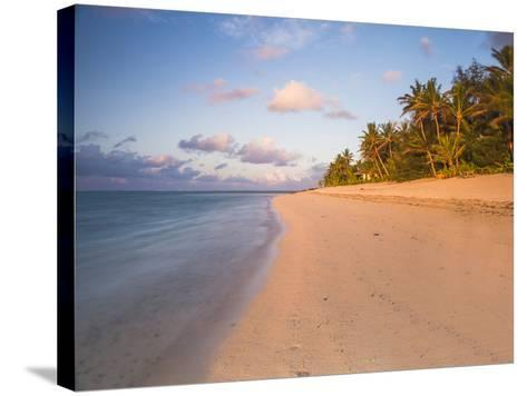 Tropical Beach with Palm Trees at Sunrise, Rarotonga, Cook Islands, South Pacific, Pacific-Matthew Williams-Ellis-Stretched Canvas Print