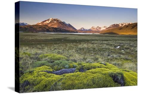 Sunrise at Belgrano Lake (Lago Belgrano), Argentina-Matthew Williams-Ellis-Stretched Canvas Print