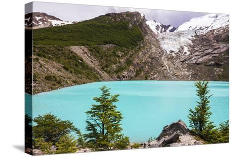 Huemul Lake (Lago Huemul) and Huemul Glacier (Glaciar Huemul), El Chalten, Patagonia, Argentina-Matthew Williams-Ellis-Stretched Canvas Print