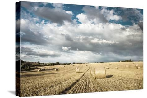 Baled Field, Gloucestershire, England, United Kingdom, Europe-John Alexander-Stretched Canvas Print