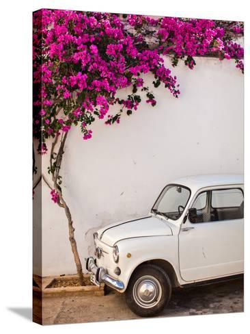 Fiat under Tree in Mojacar, Andalucia, Spain, Europe-John Alexander-Stretched Canvas Print