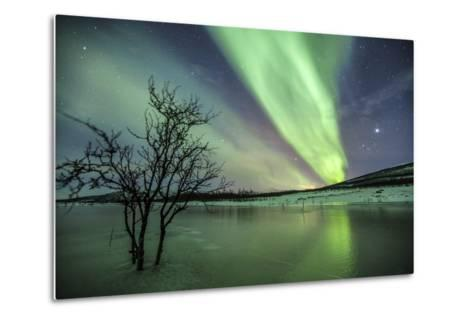 Aurora Borealis on the Frozen Lagoon of Jaegervatnet, Stortind, Lyngen Alps, Troms, Lapland, Norway-Roberto Moiola-Metal Print