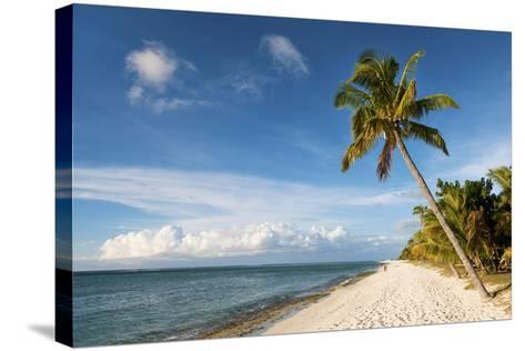 Turquoise Sea and White Palm Fringed Beach, Le Morne, Black River, Mauritius, Indian Ocean, Africa-Jordan Banks-Stretched Canvas Print