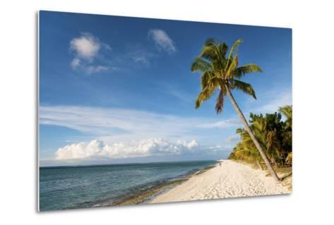Turquoise Sea and White Palm Fringed Beach, Le Morne, Black River, Mauritius, Indian Ocean, Africa-Jordan Banks-Metal Print