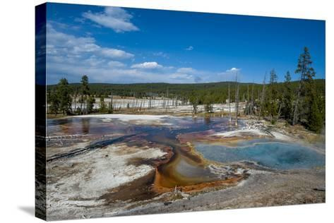 Firehole Spring, Yellowstone National Park, Wyoming, United States of America, North America-Michael DeFreitas-Stretched Canvas Print