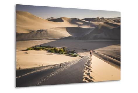 Tourists Climbing Sand Dunes at Sunset at Huacachina, a Village in the Desert, Ica Region, Peru-Matthew Williams-Ellis-Metal Print