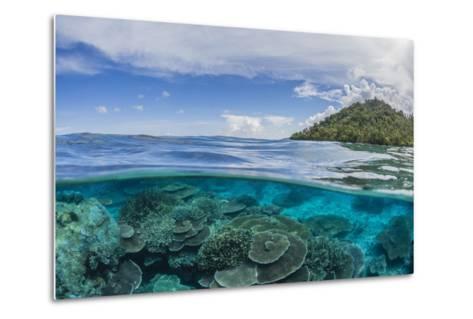 Half Above and Half Below View of Coral Reef at Pulau Setaih Island, Natuna Archipelago, Indonesia-Michael Nolan-Metal Print