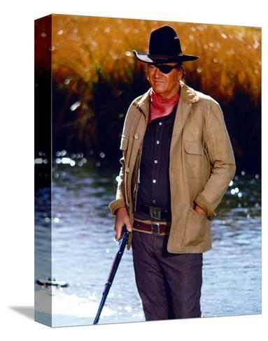 Rooster Cogburn--Stretched Canvas Print