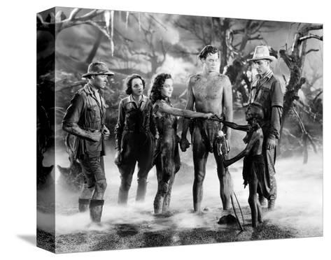 Tarzan and His Mate--Stretched Canvas Print