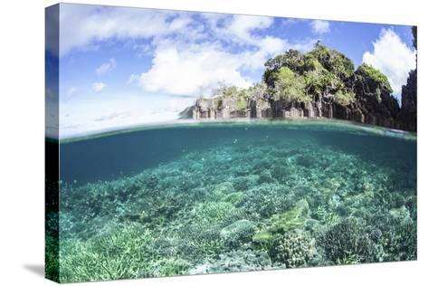 A Beautiful Coral Reef Grows Near a Set of Limestone Islands in Indonesia-Stocktrek Images-Stretched Canvas Print