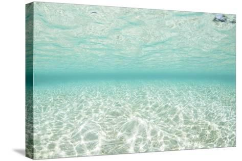 Bright Sunlight Dances across a Shallow Sand Seafloor in Palau-Stocktrek Images-Stretched Canvas Print