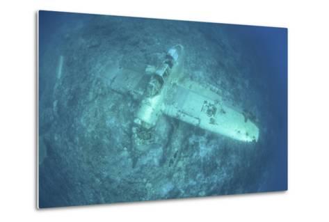 A Japanese Jake Seaplane on the Seafloor of Palau's Lagoon-Stocktrek Images-Metal Print