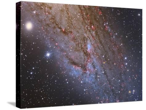 Close-Up of the Southwest Spiral Arm of Messier 31-Stocktrek Images-Stretched Canvas Print