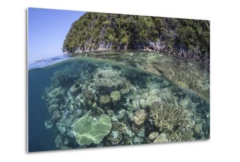 A Healthy Coral Reef Grows Near Limestone Islands in Raja Ampat-Stocktrek Images-Metal Print