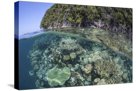 A Healthy Coral Reef Grows Near Limestone Islands in Raja Ampat-Stocktrek Images-Stretched Canvas Print
