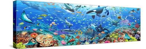 Underwater Panorama-Adrian Chesterman-Stretched Canvas Print