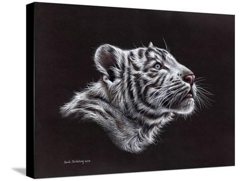 White Tiger Pastel-Sarah Stribbling-Stretched Canvas Print