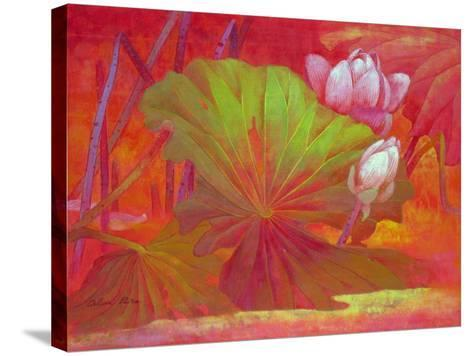Enchanting-Ailian Price-Stretched Canvas Print