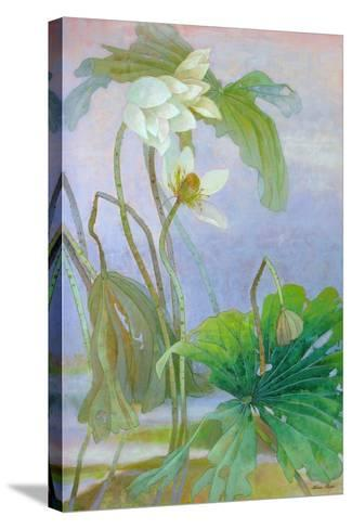 The Rise of White Lotus-Ailian Price-Stretched Canvas Print