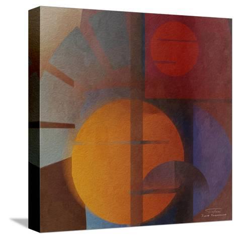 Abstract Tisa Schlemm 05-Joost Hogervorst-Stretched Canvas Print