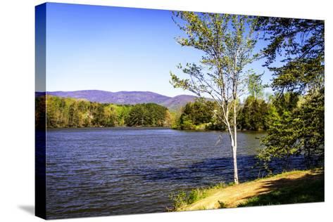 Beaver Creek-Alan Hausenflock-Stretched Canvas Print