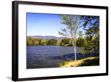 Beaver Creek-Alan Hausenflock-Framed Art Print